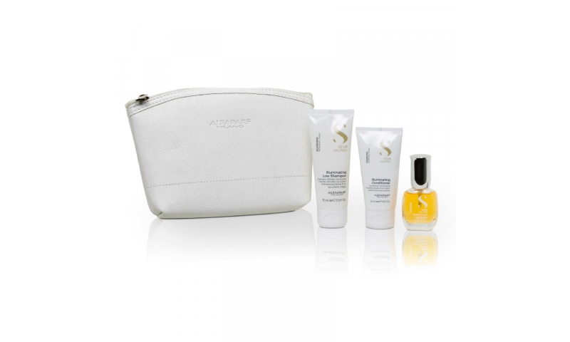 ALFAPARF Mini Gift Set